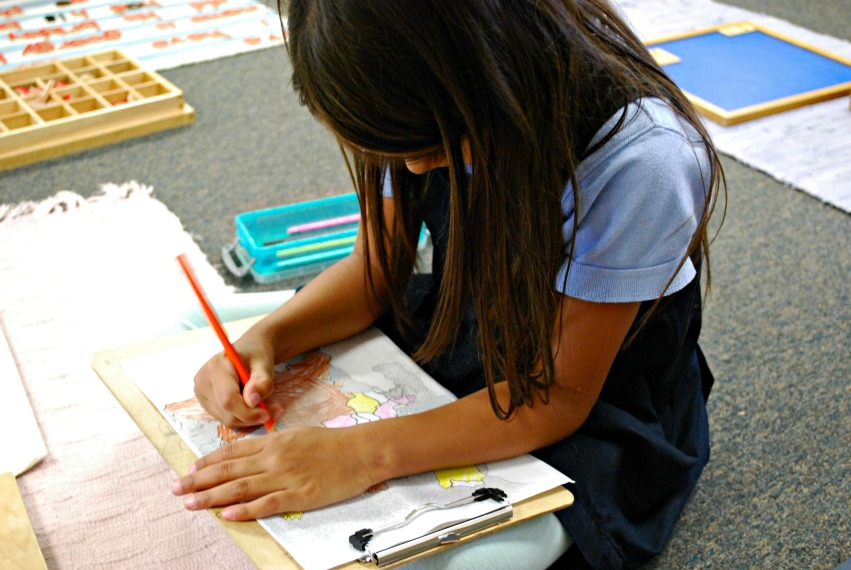 VPK Charter School Curriculum