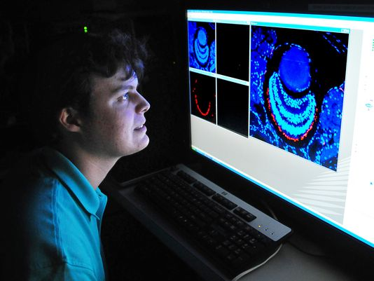 River Grace, former Educational Horizons student, using a laser scanning microscope at Florida Tech while working on his science project the nervous system of the Brahminy blindsnake. He is the winner of three prizes given at the Intel International Science & Engineering Fair this May in Arizona.