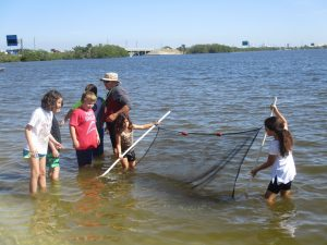 Save our Indian River Lagoon!